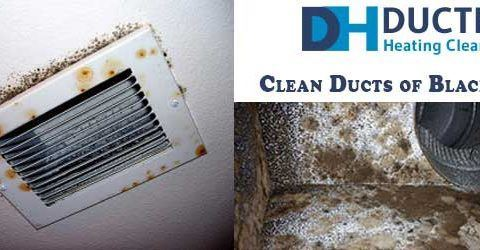 How to Clean Ducts of Black Mould?