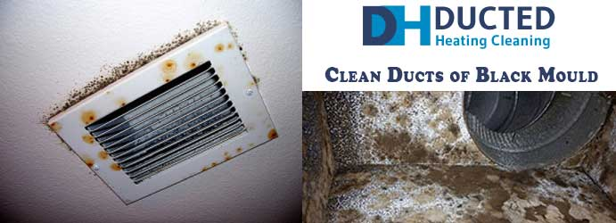 Clean Ducts of Black Mould