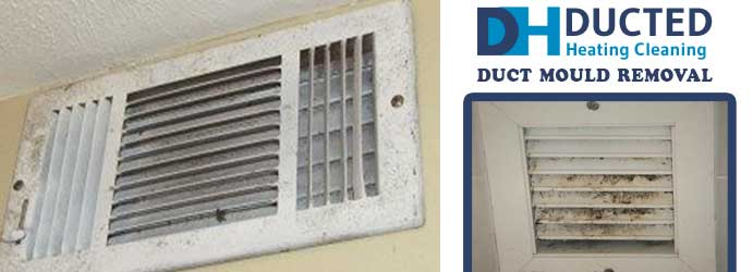 Duct Mould Removal