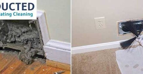 How can Mold in Duct Damage your Entire System?