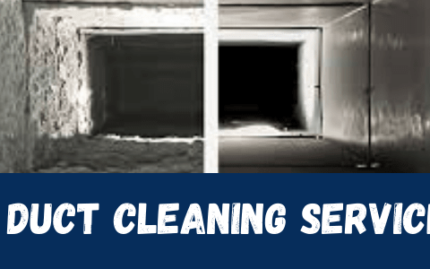 How to Get Rid of Pests from Ducts?